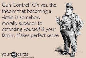 gun control   sense