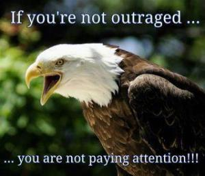eagle outraged